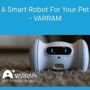 Varram Robot Pet Feeder